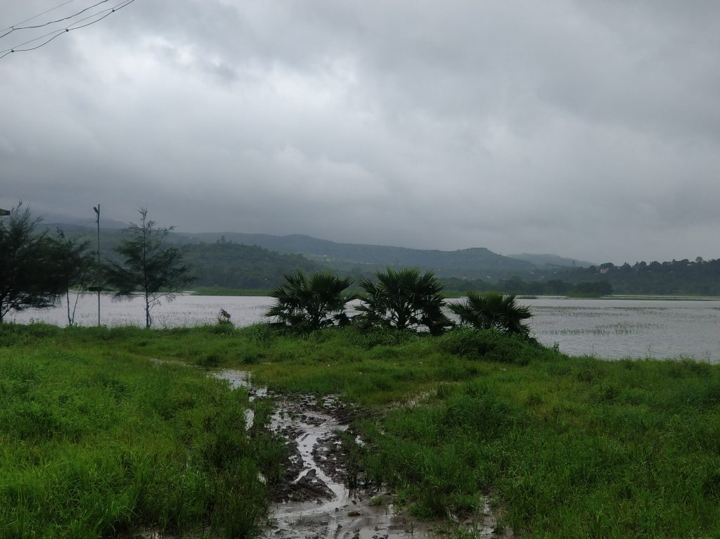 A view of the lake from the bird watching point at Sangrun