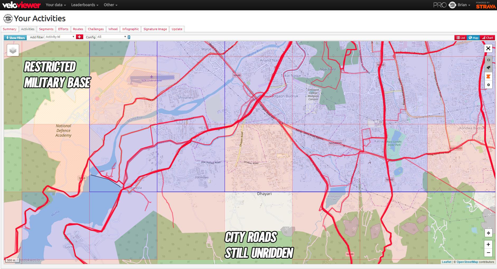 VeloViewer Activity Map Details
